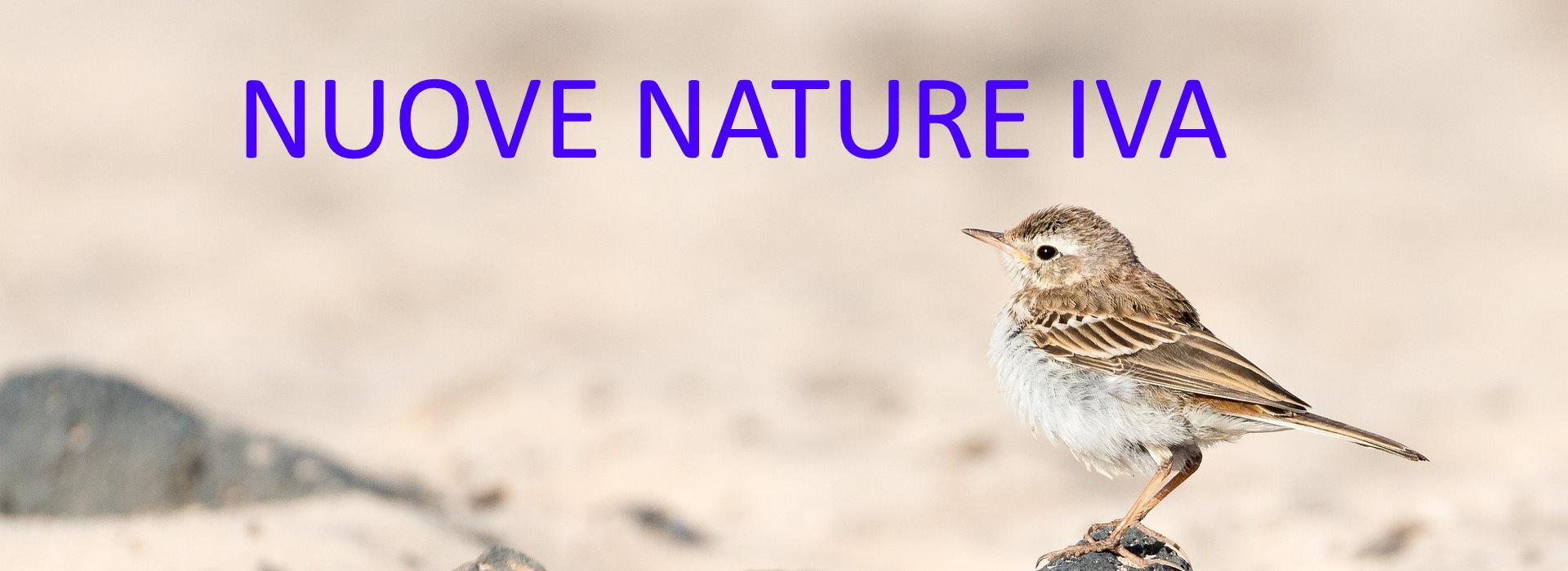 NATURE iva